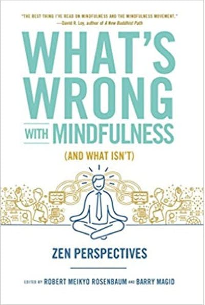 What's Wrong with Mindfulness (And What's Not) (with Rosenbaum, R.)